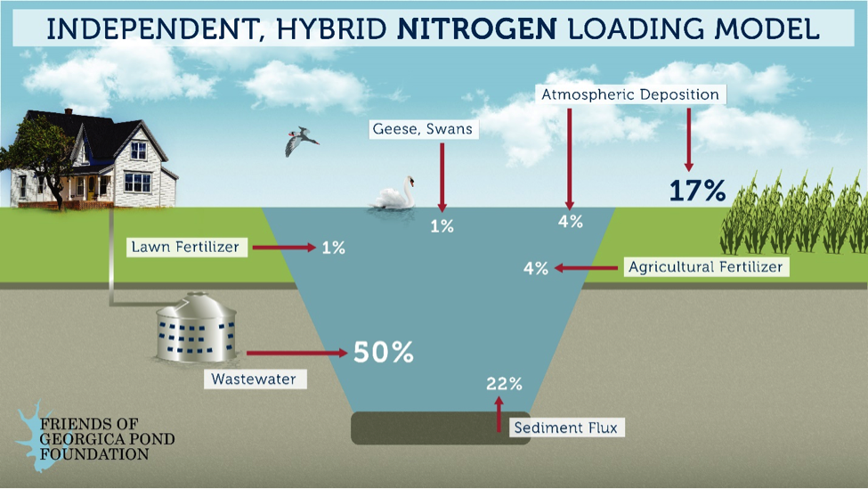 Nitrogen and You — Part One – Friends of Georgica Pond Foundation
